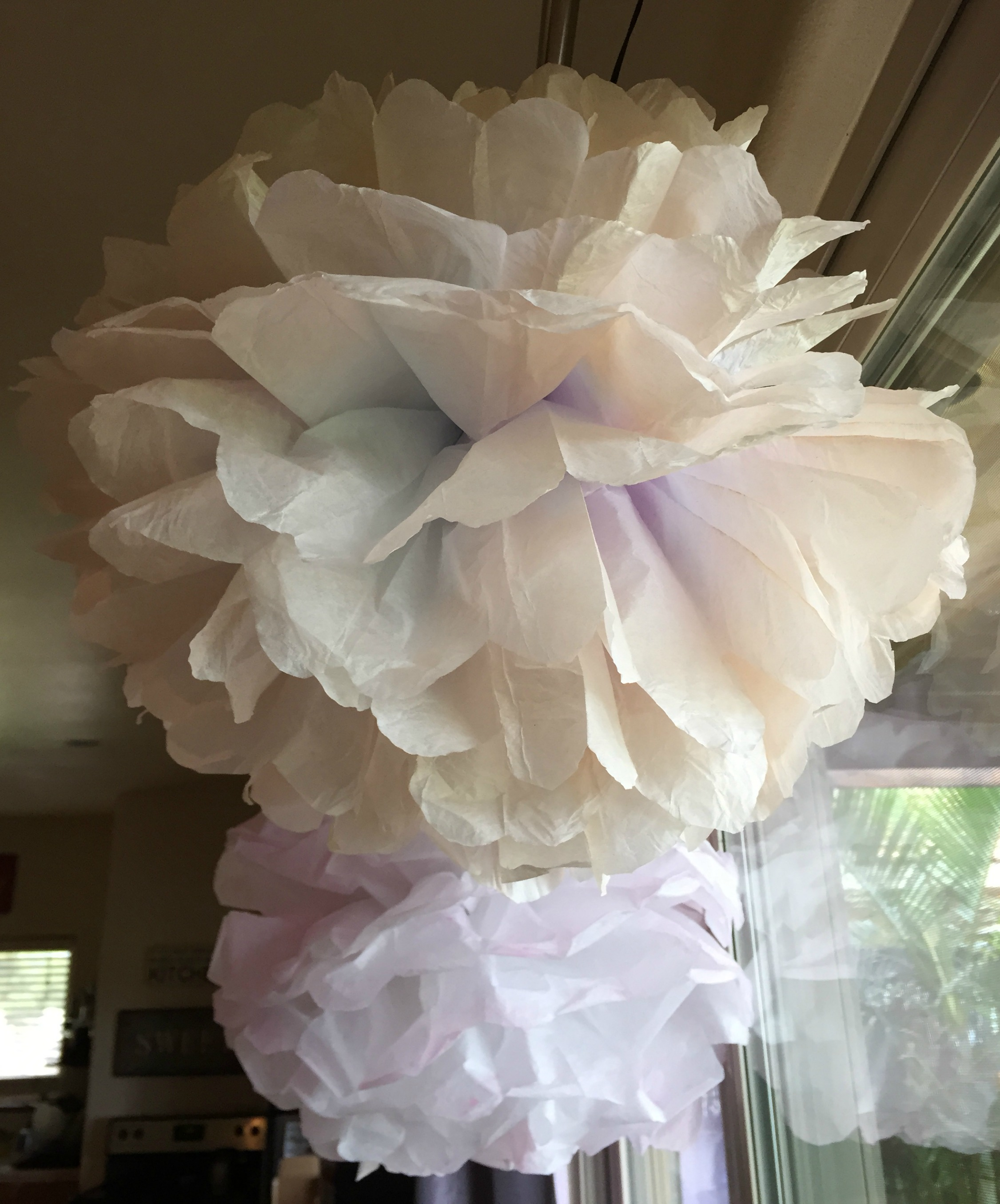 Strange Diy Party Decorations Part 1 Tissue Paper Pom Poms Home Interior And Landscaping Ologienasavecom